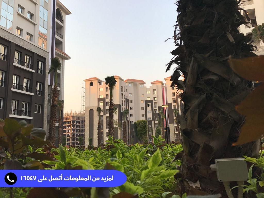 العاصمة الادارية الجديدة 2019
